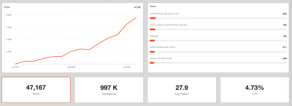 seo dashboard to view